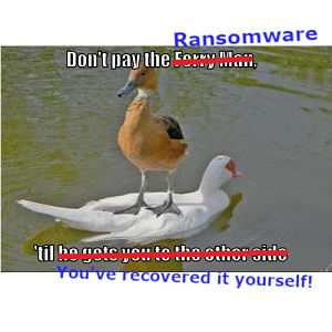Deal with Ransomware
