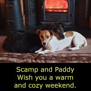 Something Completely Different - Picture of two small dogs, a Jack Russell Terrier and a Hairy Terrier, lying in front of a small domestic stove with a warm fire in it. The hairy terrier is resting his head on the back of the Jack Russell and both are looking at the camera.